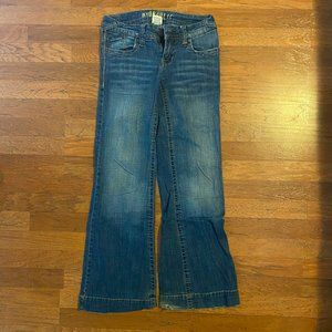 Medium Wash Flare Jeans